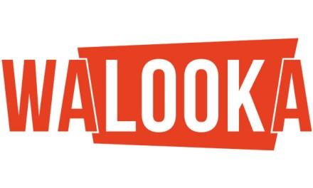 Walooka : les séries que vous ne connaissez pas en streaming légal