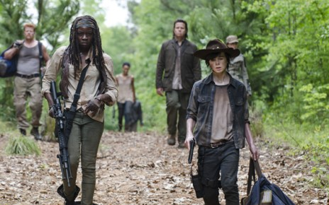 Walking Dead - The Walking Dead 5x10 : Them