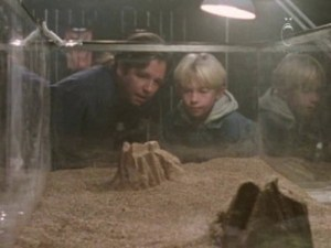 Le père et son fils observant les créatures @Showtime