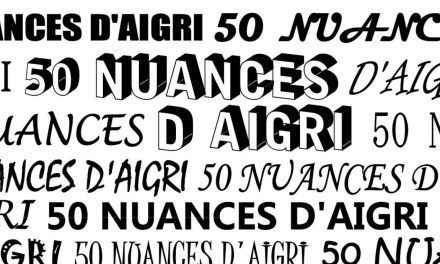 50 Nuances d'Aigri : PAN de Joe Wright