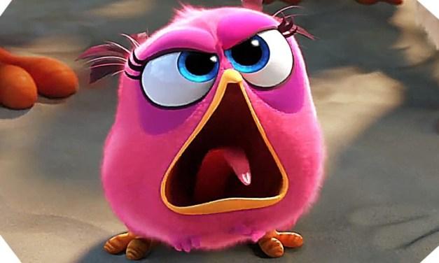 Angry Birds le film : petit guide pour un bon commerce