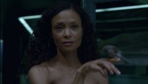 westworld-contrapasso-episode5-review