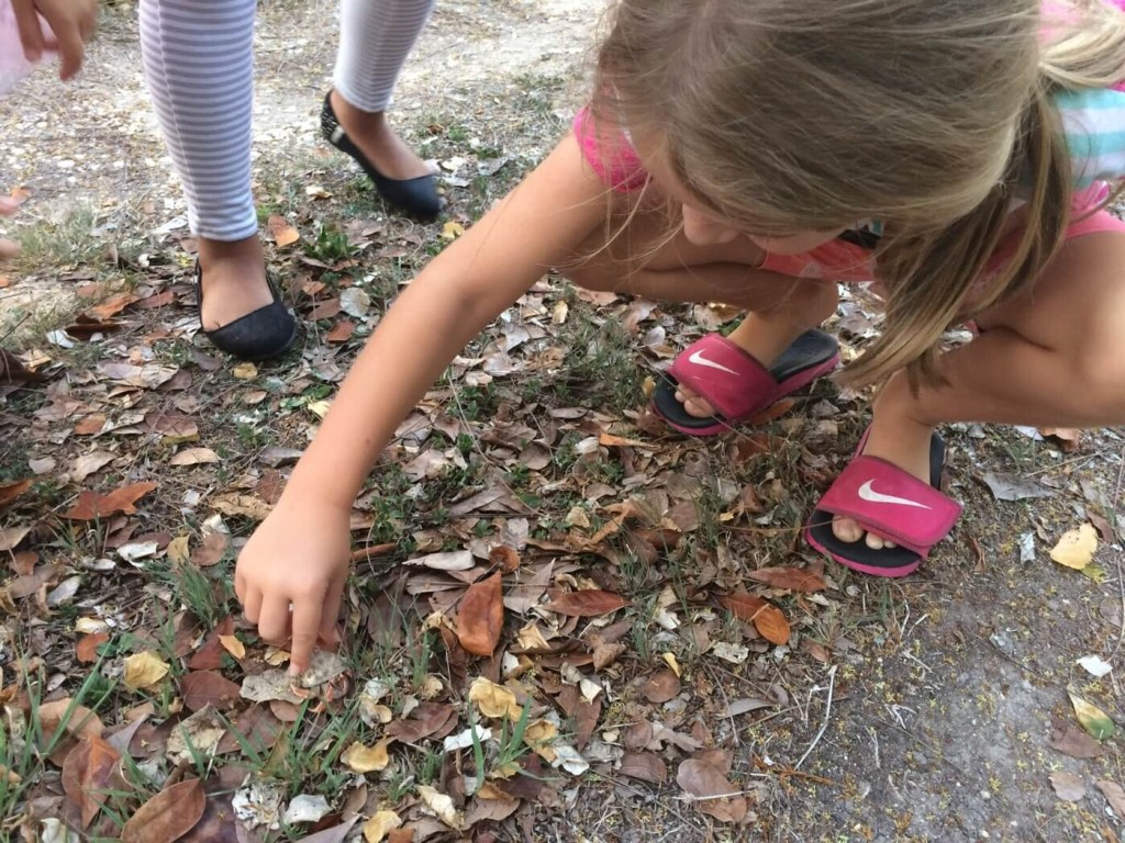 child picking up a hermit crab while on a savoring walk