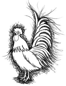 a rooster drawn in scribble art style from the o antiphons book