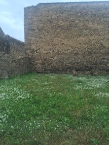 Walls surrounded by greeness