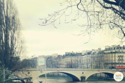 Seine in Winter