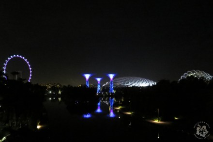 singapore gardens by the bay at night 02