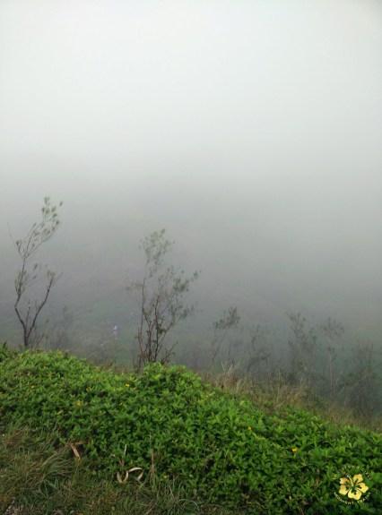 Osmena Peak Cebu 07