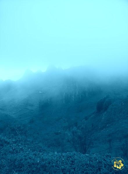 Osmena Peak Cebu 09