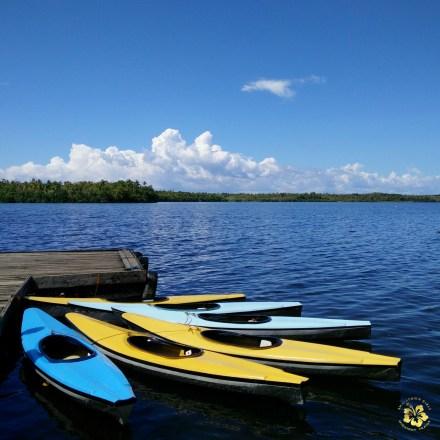 Camotes_Cebu_Lake Danao_02