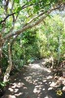 Camotes_Cebu_Lake Danao_07