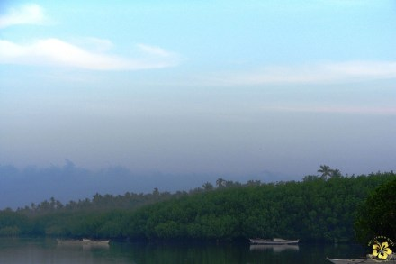 Early morning in Bohol