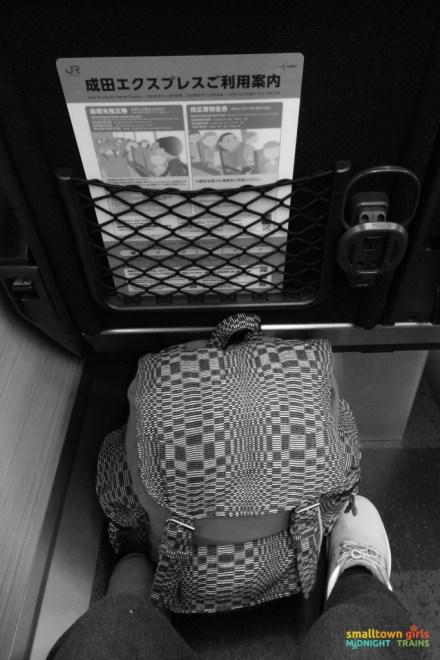 SGMT Japan Narita Express 02