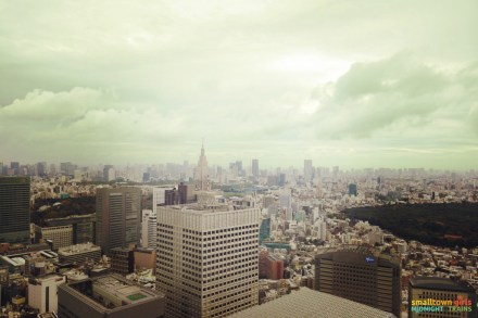 SGMT Japan Tokyo Skyline 02