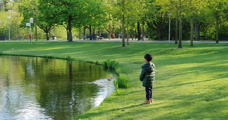 Springtime Walks in Amsterdam's Vondelpark