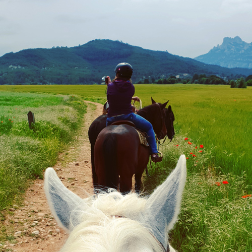 SGMT | Book My Instagram | Barcelona | Montserrat Horseback Riding