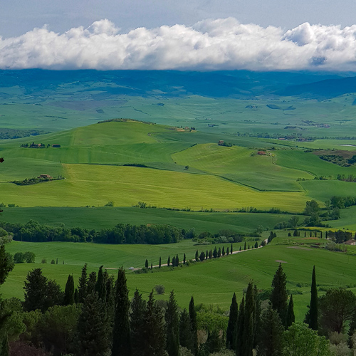 SGMT | Book My Instagram | Tuscany Tour from Florence