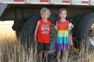 Wheat Harvest 2012