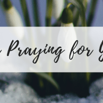 "Friday Flowers, part 2 of 2: ""I'm Praying for You"""