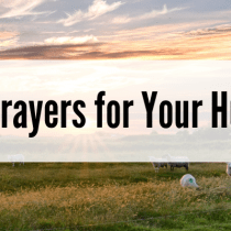 Mom Prayers for Her Kids and Husband