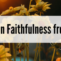 Lessons on Faithfulness from a Shrub