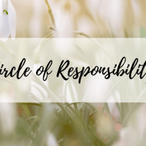 Circle of Responsibility