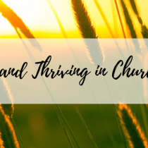 Surviving and Thriving in Church Politics