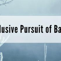 The Elusive Pursuit of Balance