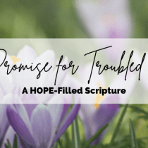 A Promise for Troubled Times (A HOPE-Filled Scripture)