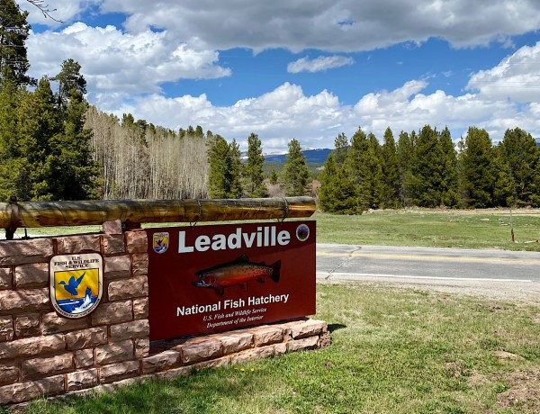 Fun Times In The Beautiful Leadville National Fish Hatchery