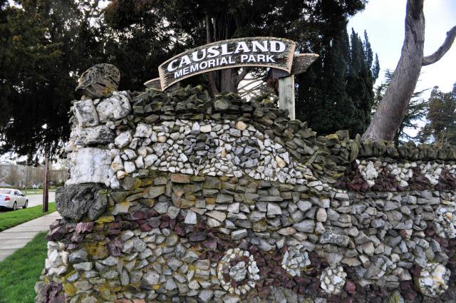 Causland Park