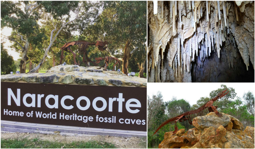 Naracoorte in South Australia.