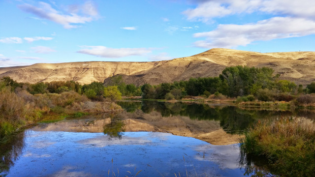 View on the Yakima bike trail.