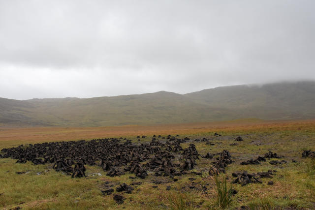 Peat logs at Ballaghisheen Pass.