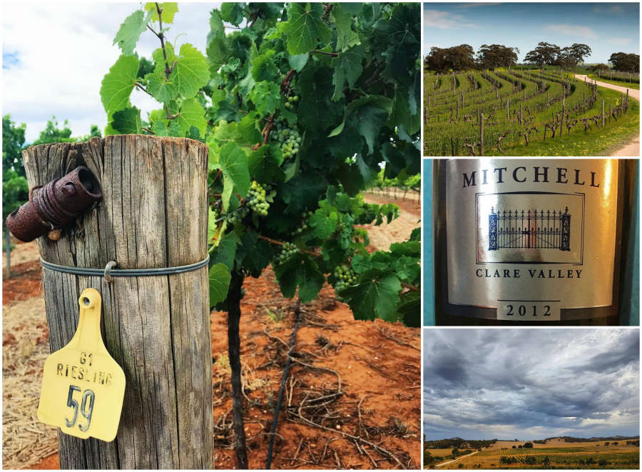 Australian wineries in the Clare Valley.