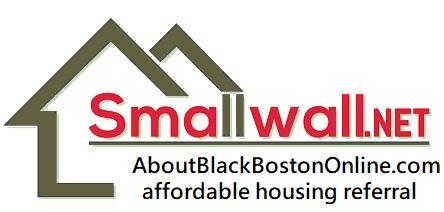 Smallwall Net Logo