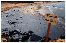 Image result for environmental disaster after 2006 lebanon war