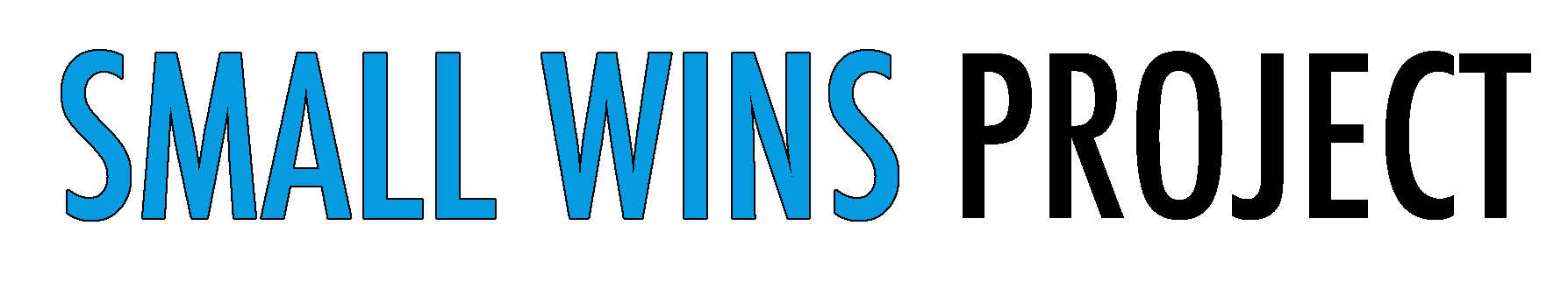 Small Wins Project