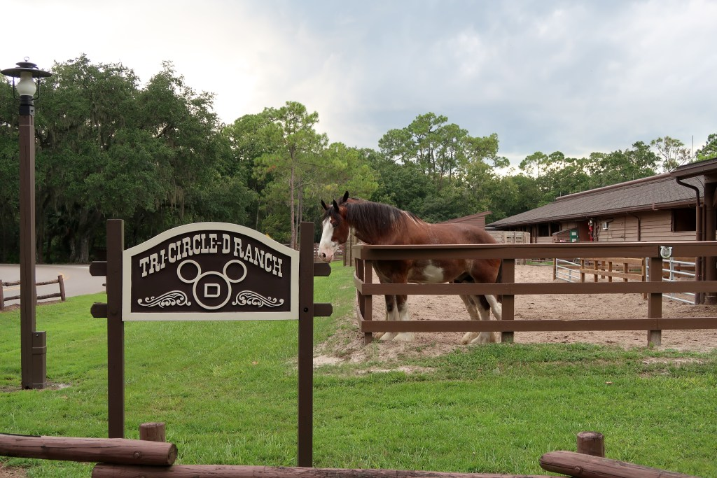 Disney's Fort Wilderness Resort Tri-Circle-D Ranch