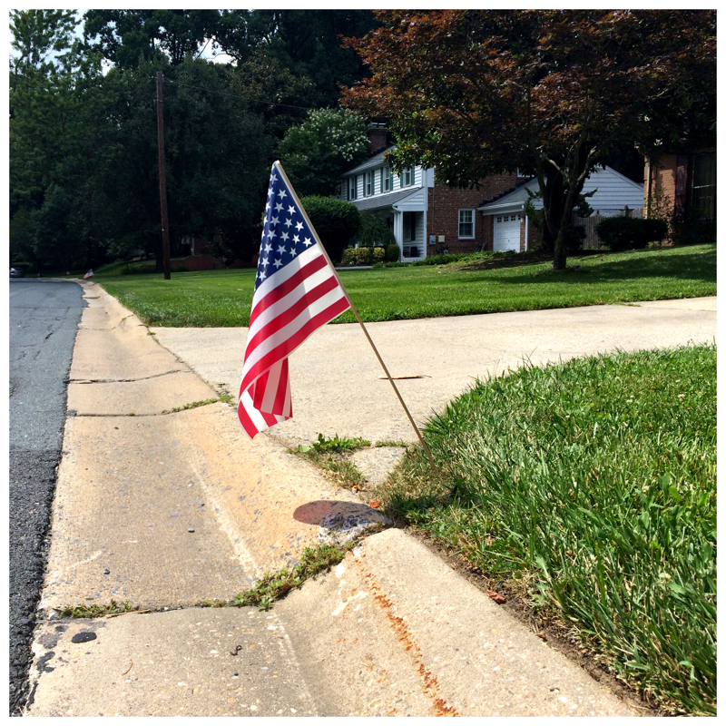 US Flag planted in garden to mark Memorial Day in Kensington, Maryland