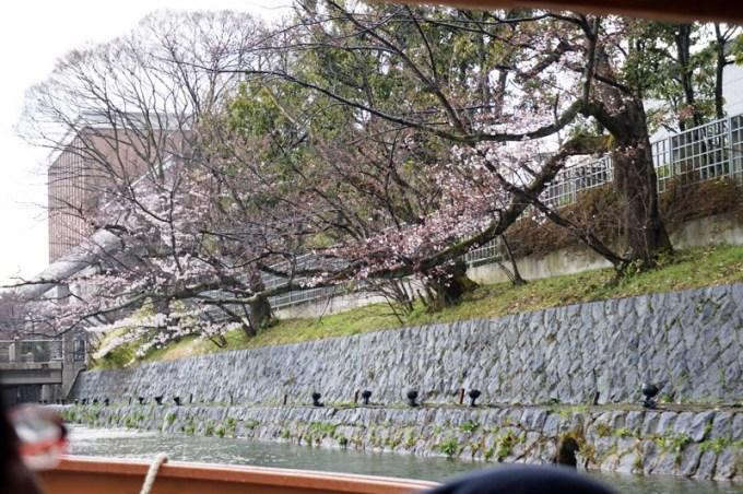 岡崎公園十石舟2016 4