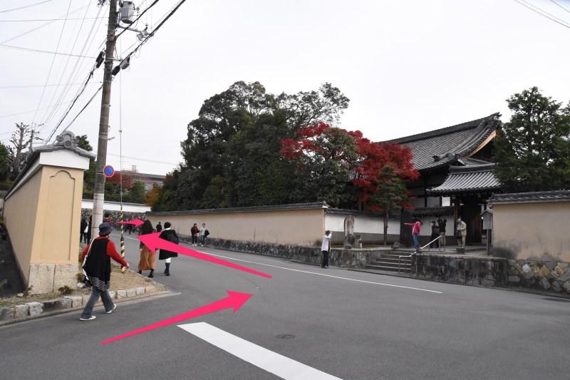 Tofukuji momiji7 2