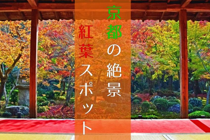 【紅葉】インスタ映え必至!京都の秋、絶景紅葉スポット9選