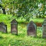 墓じまいの手続きや永代供養の費用を詳しく調べてみました!