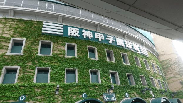 阪神甲子園球場の座席表のキャパや見え方を画像付きでご紹介!おすすめの席はどこなの?