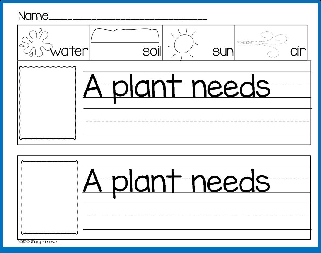 Preschool Worksheets On Plants 6
