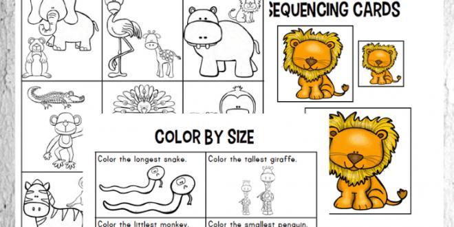 Zoo Animal Math Worksheets For Preschoolers