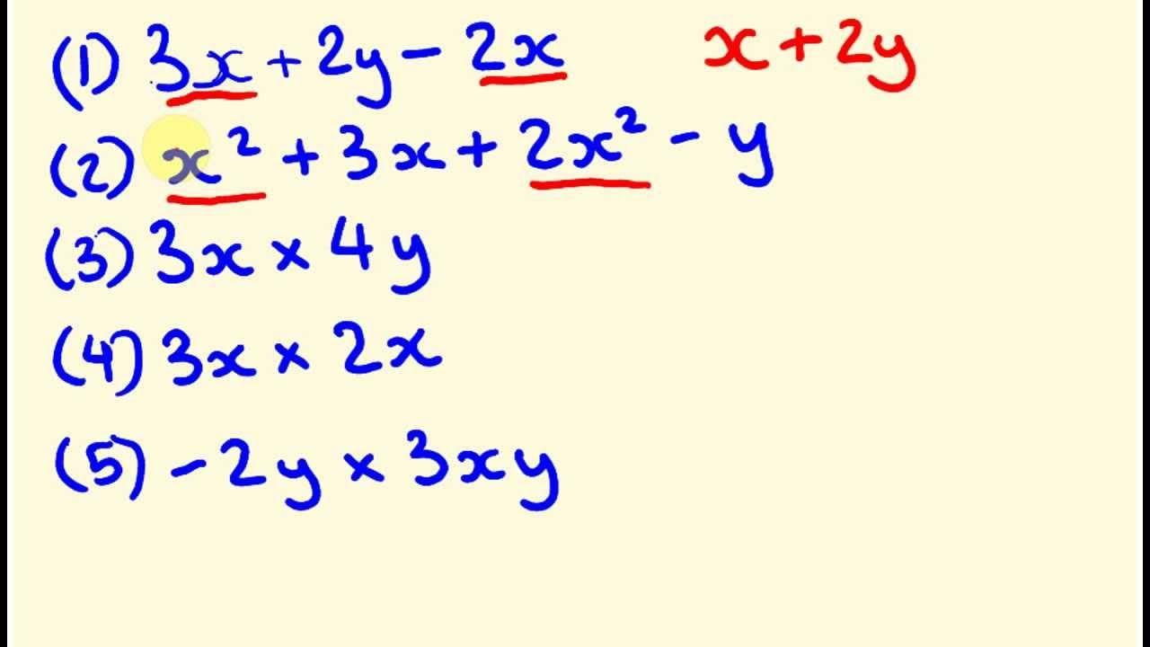 Introduction To Algebraic Expressions Worksheets