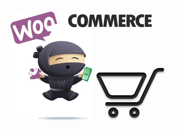 SW Supershop - Woocommerce Integration