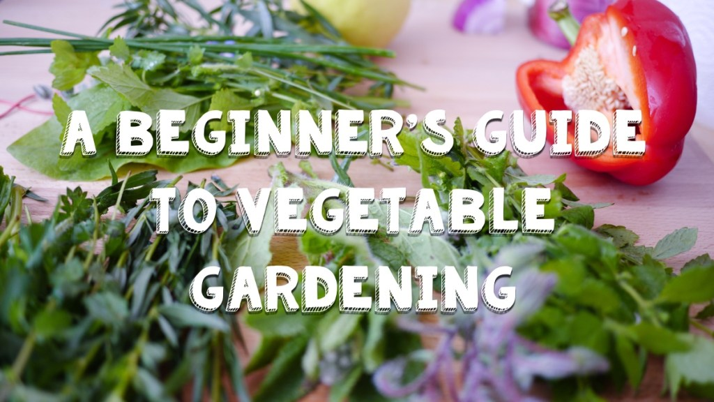 A beginner's guid to vegetable gardening - Everything you need to know to get started!